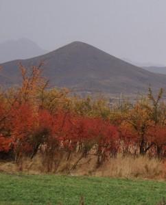 پاییز رابر
