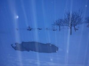 بارش برف -منطقه دیوران