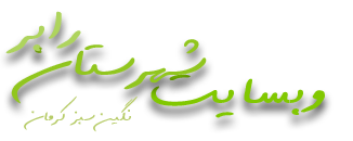 وبسایت شهرستان رابر