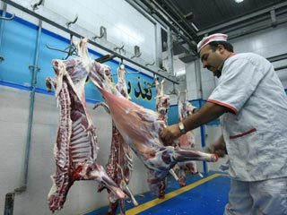 veterinary_organizations_planning_to_remove_the_traditional_slaughterhouses